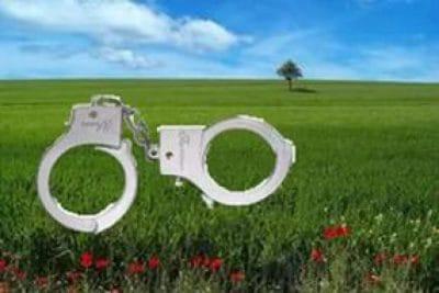 Руководителя сельсовета вБашкирии уличили внезаконной раздаче земли